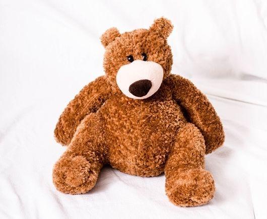 teddy-1226991_1280-crop-1-compressor.jpg